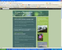 Orchidées et leur biodiversité
