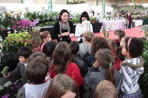 Une classe d'école écoutant le cours