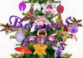 sapin de noël rempli d'orchidées