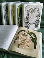Un livre de collection